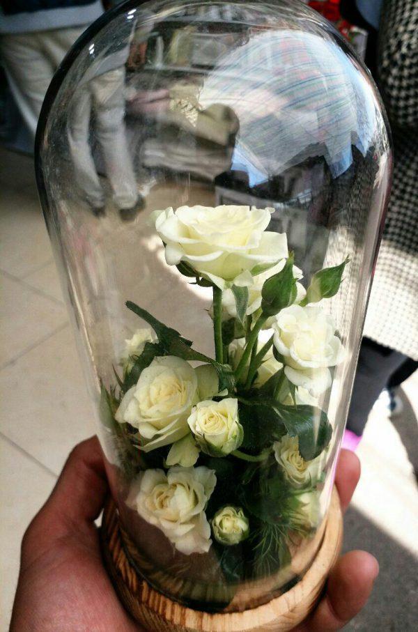 گل آراسته شماره 86 3
