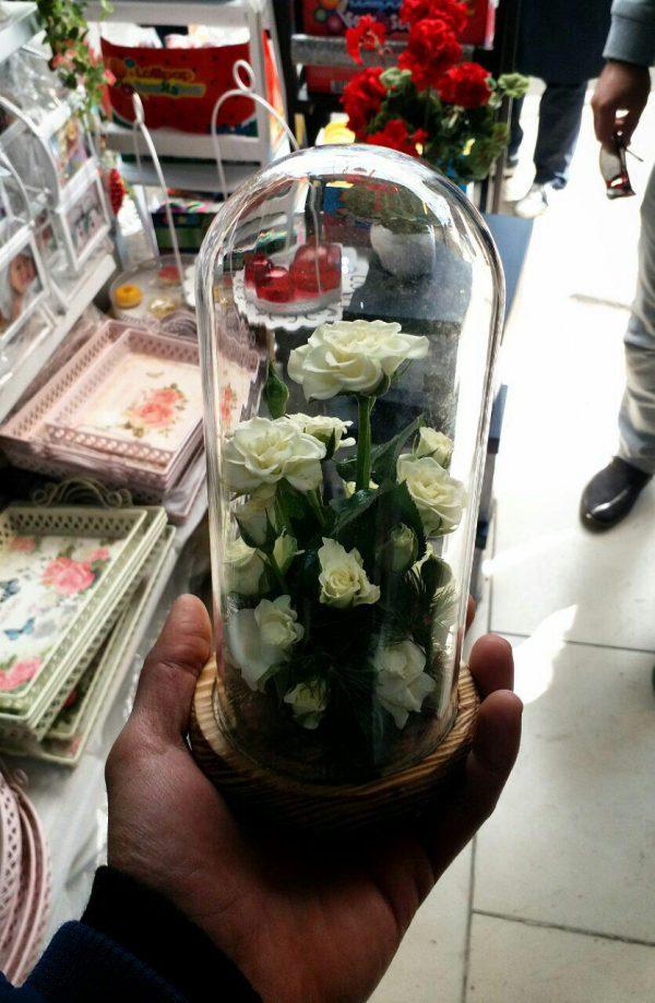 گل آراسته شماره 86 4