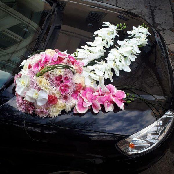گل افسانه شماره 95 6