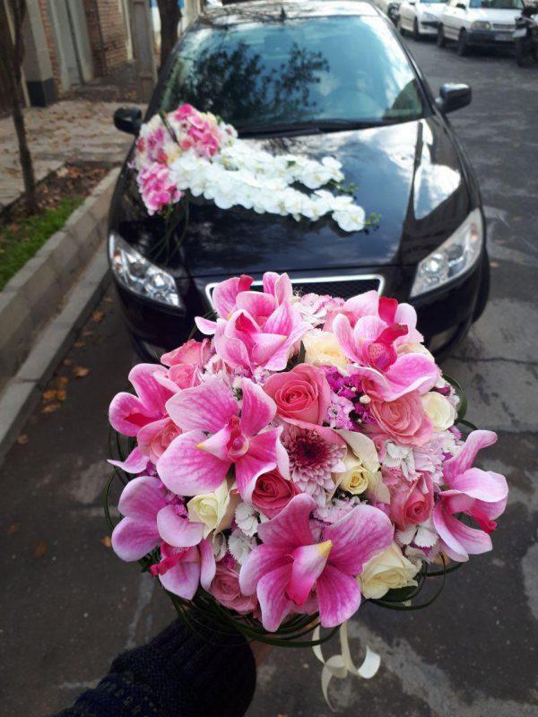 گل افسانه شماره 95 8