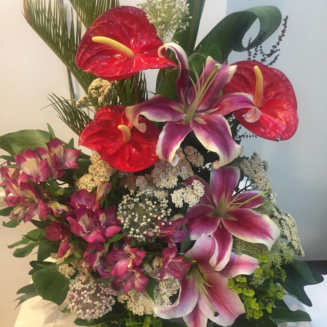 گل شماره 210