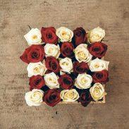 باکس گل مکعبی هارد باکس با گل رز سفید و قرمز شماره 137
