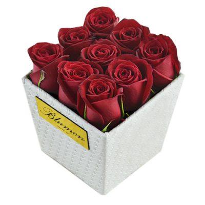 باکس گل رز کوچک و ارزان
